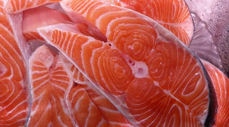 Fischmarkt Köln Saisonstart